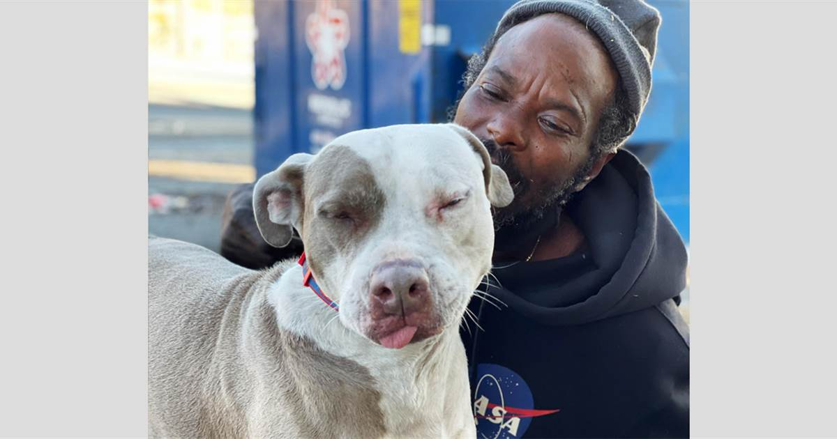 Homeless man burns animal shelter in Atlanta to save dogs and cats